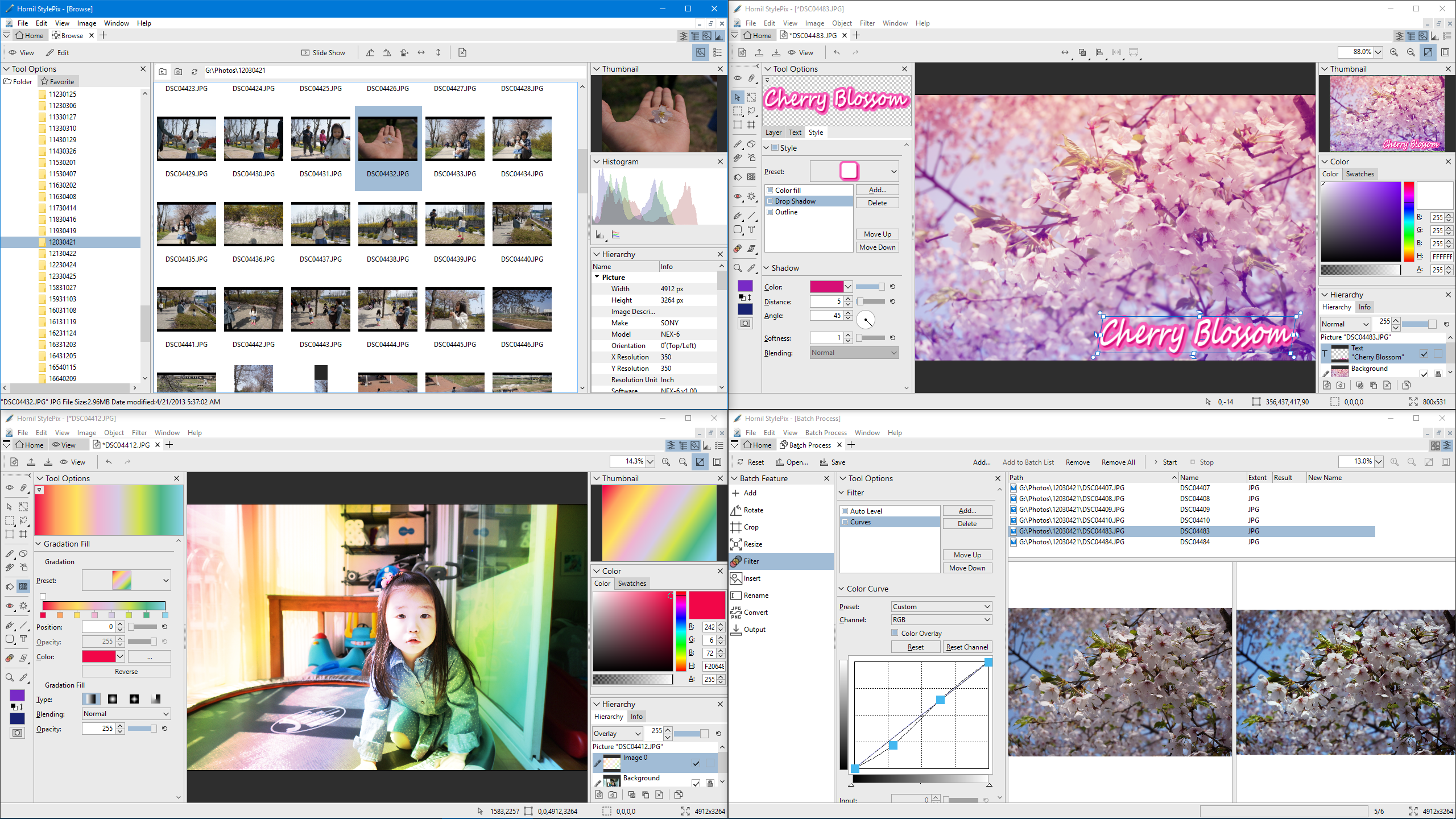 Click to view Hornil StylePix Pro 2.0.3.0 screenshot
